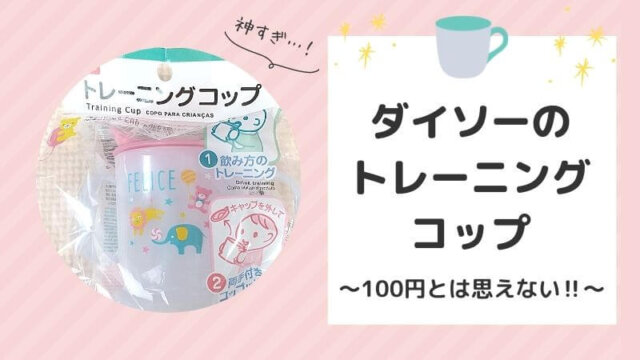 Daiso Training Cup Review